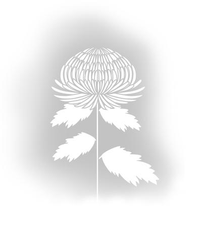 Motyuira1