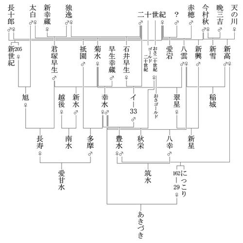 Pear_family_tree